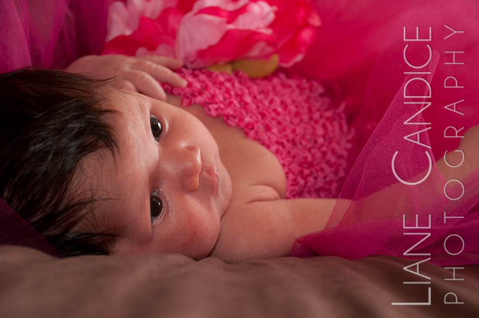 Baby Girls in a Pink Tutu | Houston Newborn Photography